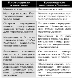 tushkin3